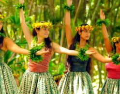 Source: Google+: Hula in Hawaii